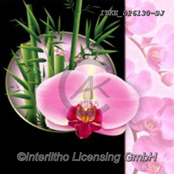 Isabella, FLOWERS, BLUMEN, FLORES, paintings+++++,ITKE026130-SJ,#f#, EVERYDAY