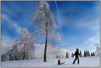 A mother pulls her young son along a snow-covered golf course. Photo taken in Pennsylvania, but can be used as a snow scene anywhere. Model released image.