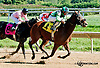 Dontthangowithmango winning at Delaware Park on 9/23/13