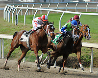 3/17/2012  -  Havre De Grace with jockey Ramon Dominguez (red and white silks) aboard takes the outside route coming out of the turn and passes Juanita and jockey Rosie Napravnik (blue cap) and Sterling Madame ridden by James Graham (maroon cap) and goes on to win the 3rd running of the $150,000 New Orleans Ladies.  Alexander Barkoff