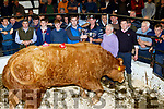 Champion<br /> --------------<br /> Pictured at Gortatlea Mart last Friday with the Supreme Champion Bull are L-R Michael Brady, Darran Brosnan, Scott Douglas, Brendan O'Neill, Rhyno (Sponsor) Neill Blennerhassit, farmer, Baufort, Tommy O'Callaghan, judge with Mart Manager Maurice Brosnan.