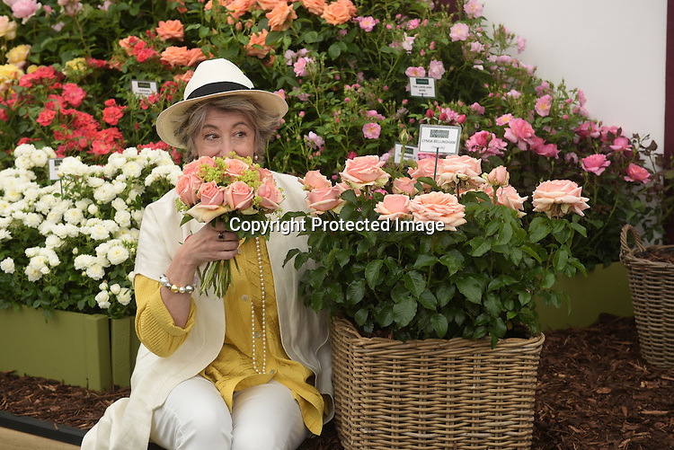 """Maureen Lipman poses with the new roses named the """"Lynda Bellingham Rose"""" At the RHS Hampton Court Flower show, London 29.6.15"""