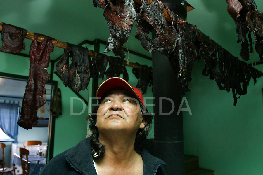 Vuntut Gwitchin First Nation member, Randall Tetlichi, stands under his hanging dry caribou meat in his home in Old Crow, Yukon Territory, Canada.