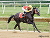 Negrito winning at Delaware Park on 8/9/14