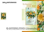 Alfredo, FLOWERS, BLUMEN, FLORES,  photos+++++,BRTOAP22736004693,#F#