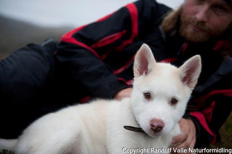 Mann og hundevalp. ---- Man and puppy.