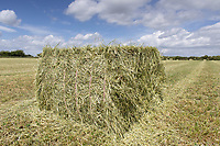 22.5.2020 Bale of haylage <br /> ©Tim Scrivener Photographer 07850 303986<br />      ....Covering Agriculture In The UK....