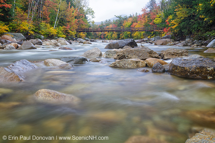 Autumn foliage around the suspension bridge that crosses the East Branch of the Pemigewasset River, near the Lincoln Woods Trailhead, during the autumn months in Lincoln, New Hampshire.