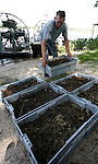 Carl Nettles stacks tubs of alligator eggs as he unloads the airboats at Reves Landing on Lake Miccosukee 25 miles east of Tallahassee, Florida July 19, 2007.