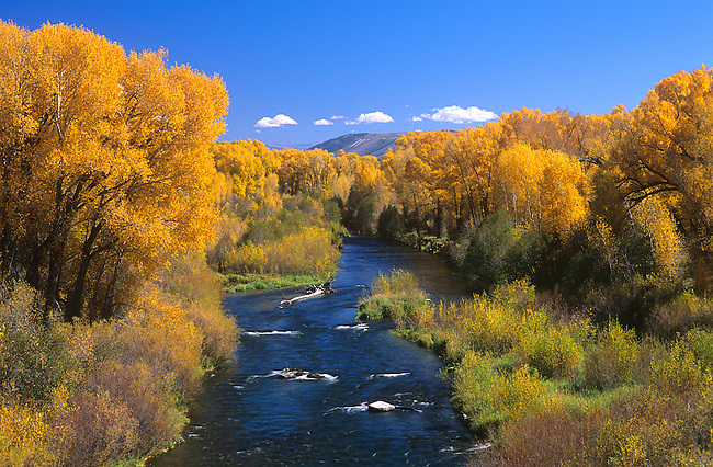 Autumn, Gunnison River, Curecanti National Recreation Area, Colorado