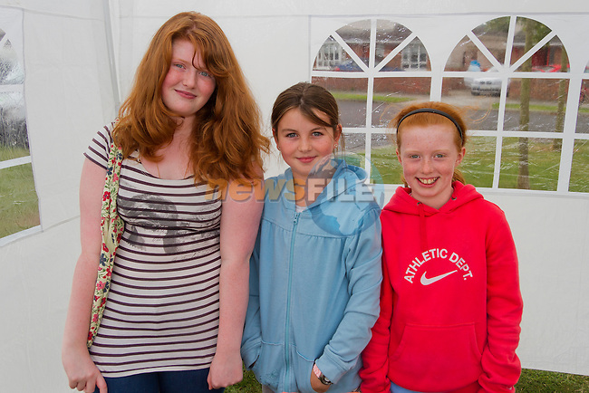Heather McCann, Chloe Martin and Moira McCabe help with the stalls on the day..Picture: Shane Maguire / www.newsfile.ie.