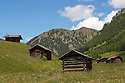 Hay barns in alpine meadow. Nordtirol, Austrian Alps, Austria, July.