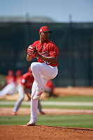 St. Louis Cardinals pitcher Johan Oviedo (30) during a Minor League Spring Training Intrasquad game on March 28, 2019 at the Roger Dean Stadium Complex in Jupiter, Florida.  (Mike Janes/Four Seam Images)