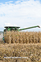 63801-07016 Farmer harvesting corn, Marion Co., IL
