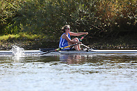 Race: 134  W.IM3.1x   [230]Ross RC - ROS-Gunn  vs [231]Worcester RC - WRR-Thornton <br /> <br /> Ross Regatta 2017 - Monday<br /> <br /> To purchase this photo, or to see pricing information for Prints and Downloads, click the blue 'Add to Cart' button at the top-right of the page.