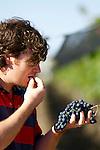 Luis Reginato is the chief winemaker for Luca, La Posta and tikal wines of the Catena Zapata portfolio.