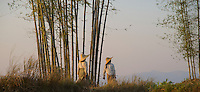 Farmers on their way home in the late afternoon Inle lake, Shan State, Myanmar/Burma