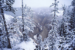 Grand Canyon of the Yellowstone in winter