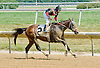 Splash Landing winning at Delaware Park on 7/16/12