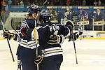 SIOUX FALLS, SD - MARCH 14:  Dakota Joshua #8 and Ed McGovern #4 from the Sioux Falls Stampede celebrates a goal with teammates against the Chicago Steel in the first period of their game Friday night at the Arena. (Photo by Dave Eggen/Inertia)