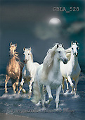 Bob, ANIMALS, horses, collage, photos, 4 horses, moon(GBLA528,#A#)