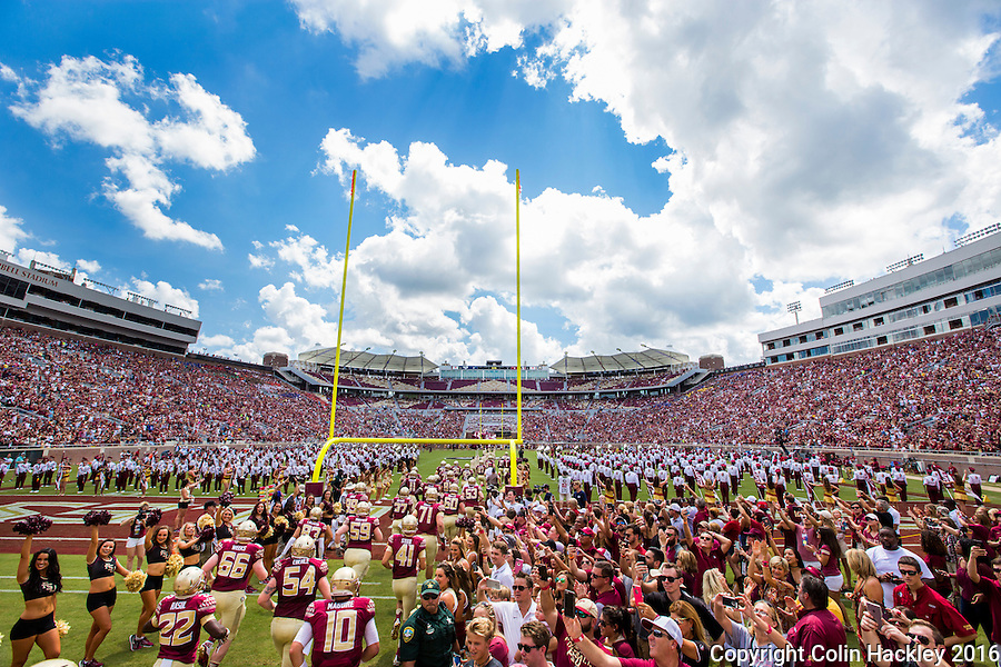 TALLAHASSEE, FLA 9/10/16-Florida State players take the field against Charleston Southern for the home opener Saturday at Doak Campbell Stadium in Tallahassee. <br /> COLIN HACKLEY PHOTO