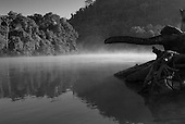 Pará State, Brazil. Aldeia Pukararankre (Kayapo). Early morning at the river.