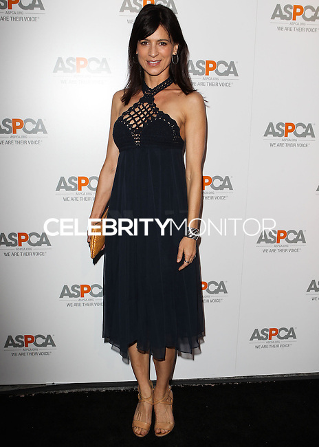 BEVERLY HILLS, CA, USA - MAY 06: Perrey Reeves at The American Society For The Prevention Of Cruelty To Animals Celebrity Cocktail Party on May 6, 2014 in Beverly Hills, California, United States. (Photo by Celebrity Monitor)