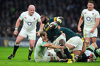 Tendai Mtawarira of South Africa takes on the England defence. Old Mutual Wealth Series International match between England and South Africa on November 12, 2016 at Twickenham Stadium in London, England. Photo by: Patrick Khachfe / Onside Images