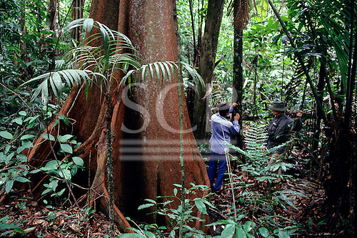 Juruena, Brazil. Scientists in the field at the foot of a huge tree recording data.