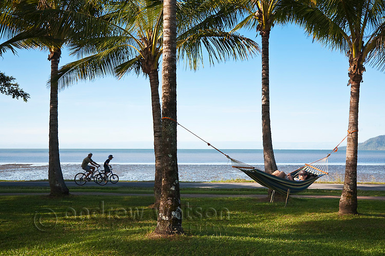 Man in hammock and people cycling on Esplanade.  Cairns, Queensland, Australia