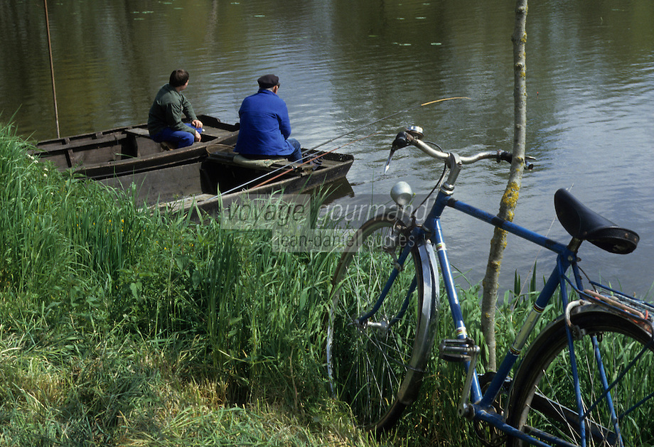 Europe/France/Pays de la Loire/Maine-et-Loire/Env Coudray Macouard : Pêcheurs sur le Thouet