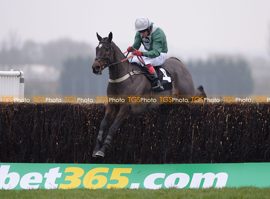 Harry Hint and Robert Thornton take the last in the bet365 Novices´ Limited Handicap Chase Cl3  - Horse Racing at Newbury Racecourse, Newbury, Berkshire 28/11/2013 - MANDATORY CREDIT: Martin Dalton/TGSPHOTO - Self billing applies where appropriate - 0845 094 6026 - contact@tgsphoto.co.uk - NO UNPAID USE