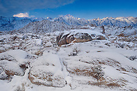711700273 winter sunrise over snow covered granite boulders and desert plants with mount whitney mount russell and lone pine peak the snow-covered eastern sierras in the background seen from the alabama hills blm protected lands in kern county california
