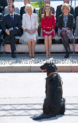 "PRINCESS LETIZA and CAMILLA, DUCHESS OF CORNWALL.Visit the ONCE guide dog foundation (Fundacioñ ONCE del Perro-guia),.Camilla and Letiza met a two month old puppy named Babu and named a new born puppy Columbus Madrid_31/11/2011..Mandatory Credit Photo: ©Dias/NEWSPIX INTERNATIONAL..**ALL FEES PAYABLE TO: ""NEWSPIX INTERNATIONAL""**..IMMEDIATE CONFIRMATION OF USAGE REQUIRED:.Newspix International, 31 Chinnery Hill, Bishop's Stortford, ENGLAND CM23 3PS.Tel:+441279 324672  ; Fax: +441279656877.Mobile:  07775681153.e-mail: info@newspixinternational.co.uk"