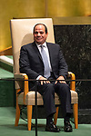DSG meeting<br /> <br /> AM Plenary General DebateHis<br /> <br /> <br />  His Excellency Abdel Fattah al-Sisi, President, Arab Republic of Egyp