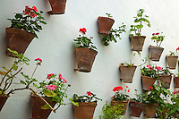 Terracotta flower pots decorating the walls of the old city, Cordoba, Andalusia, Spain.