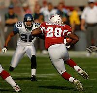 Nov. 6, 2005; Tempe, AZ, USA; Running back (28) J.J. Arrington of the Arizona Cardinals against the Seattle Seahawks at Sun Devil Stadium. Mandatory Credit: Mark J. Rebilas