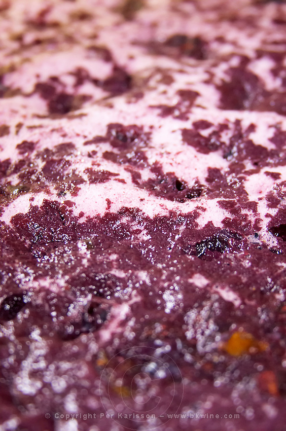 fermenting must and grapes domaine pelaquie rhone france