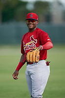 GCL Cardinals Francisco Hernandez (4) during warmups before a Gulf Coast League game against the GCL Astros on August 11, 2019 at Roger Dean Stadium Complex in Jupiter, Florida.  GCL Cardinals defeated the GCL Astros 2-1.  (Mike Janes/Four Seam Images)