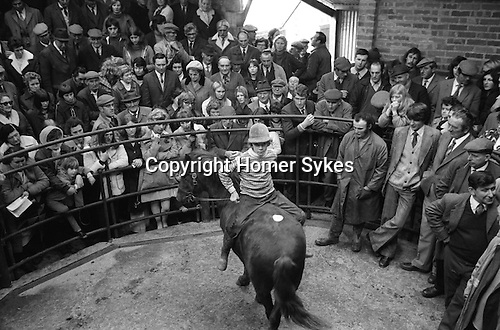 Hatherleigh Devon England 1973. Annual horse sale November.
