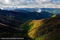Spring view of Deep Creek, Great Smoky Mountains National Park, North Carolina
