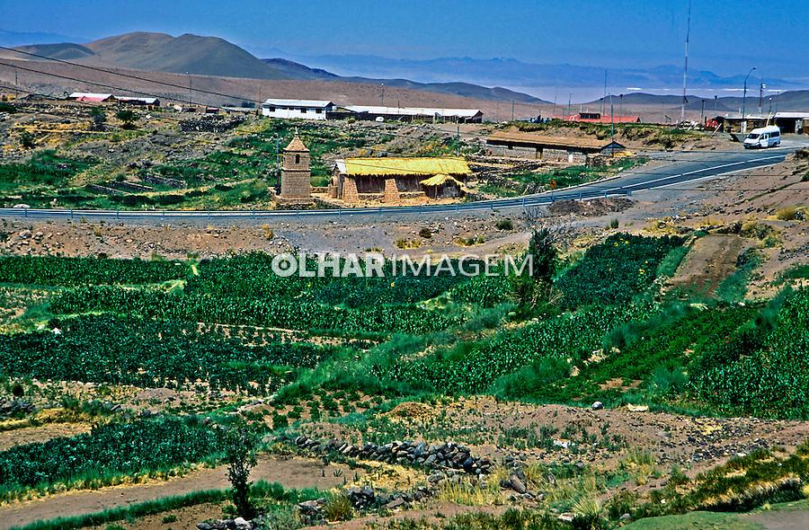 Oásis no Deserto do Atacama. Chile. 2004. Foto de Thais Falcão.