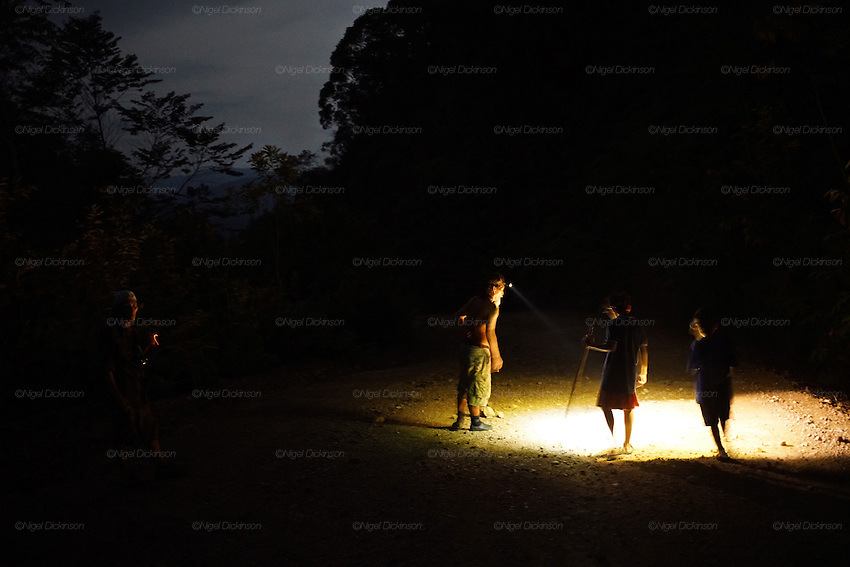 Kelabit native people, sedentary Dayaks. Hunting for spoor tracks of wild boar in forest at night with torches. Long Napir, Limbang, Sarawak 2015<br />