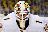 NHL 2016: Panthers vs Bruins DEC 05