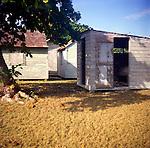 Old wooden sheds, Cayman Brac, Cayman Islands,