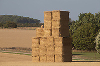 17.7.2020 Stack of Barley Straw <br />  ©Tim Scrivener Photographer 07850 303986<br />      ....Covering Agriculture In The UK.