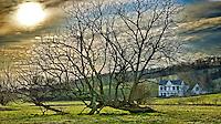 Springville Farm House
