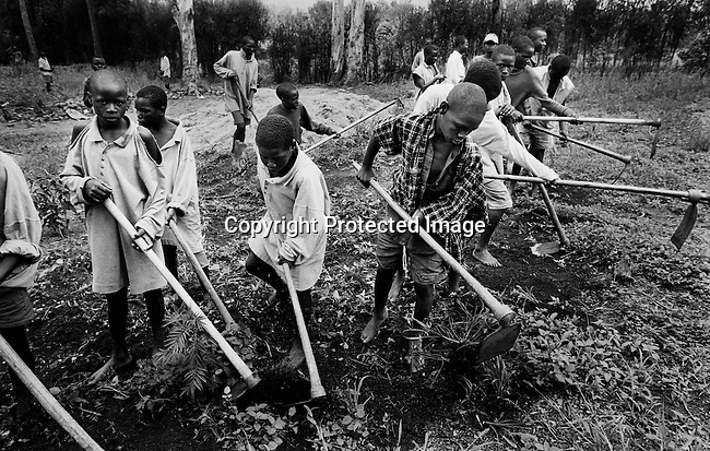 Youth prisoners accused of the genocide in Rwanda in 1994 work in a field on April 20, 1995 in Gitagata, Rwanda. About one million people were killed in about one hundred days, making it one of the worst Genocides in modern history. (Photo by: Per-Anders Pettersson)
