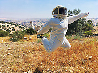 While bee-keeping in Jordan